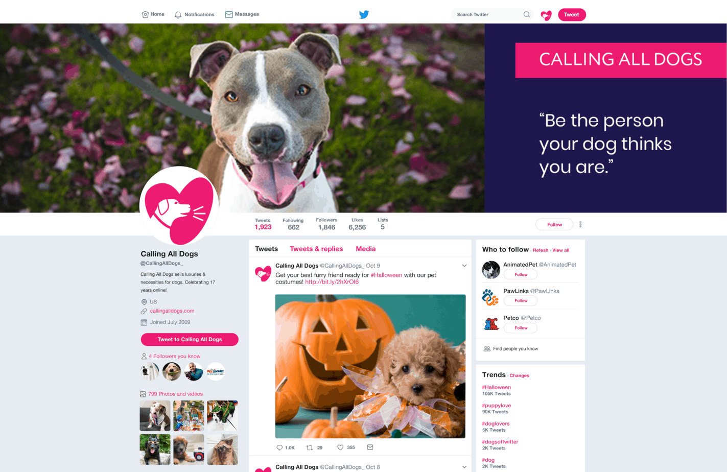 Calling All Dogs Twitter Mockup